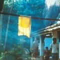 03  Ananda und der Helfer ... vor der höhlen-einsiedelei