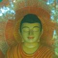98_06-buddhas-strahlenaura-im-schatten-des-fotographen.jpg