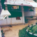 Sri Lanka 008.jpg