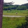 3. Father Oshida inpiziert die Reisfelder.jpg
